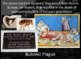 World History Review PowerPoint Presentation: The Middle Ages & The Renaissance