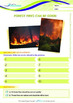 World Issues - Forest Fires Can Be Good - Grade 3