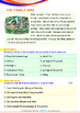 World Issues - Land Pollution (I) - Grade 1 (with 'Triple-