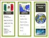 World Travel Brochure Activity
