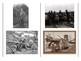 World War One Weapons Card Sort