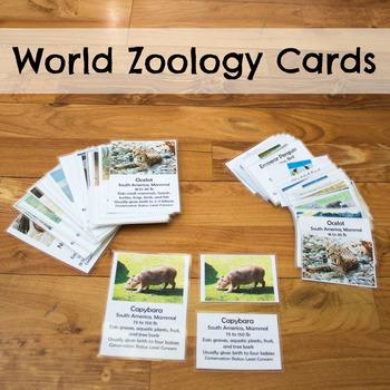 World Zoology Cards
