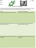 World on a Turtle's Back & Genesis Comparative Graphic Organizer