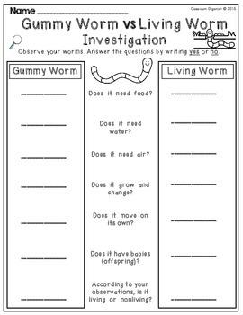 {Worm} Investigation