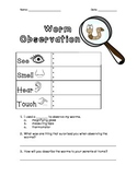 Worm Observation