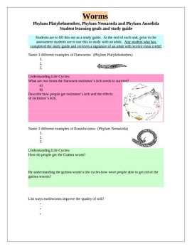 Worm Phylums Study Guide and Learning Goals