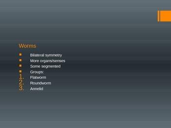 Worm PowerPoint