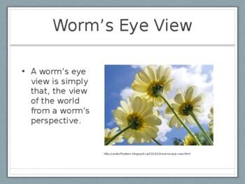 Worm's Eye View Presentation