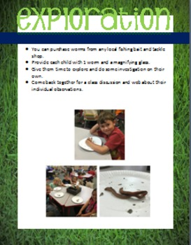 Worms-Informational/opinion writing, Craftivity & STEAM activities