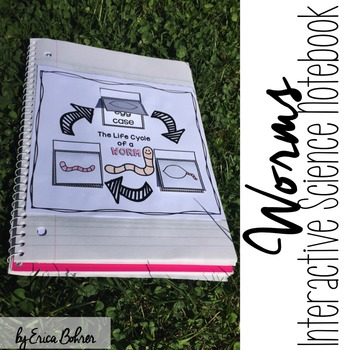 Worms Interactive Notebook