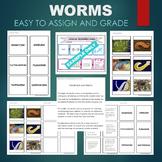 Worms (Nematoda, Annelida, Planarian, etc) Sort & Match Activity