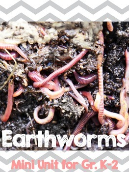 Wormy Worm-Earthworm Unit and Craft