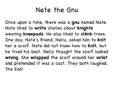 Wr, Kn, Gn, Mb (Silent Letters) Fluency Story
