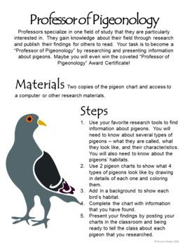 Wringer Activity - Professor of Pigeonology