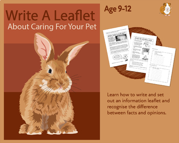 Write A Leaflet On Caring For Your Pet (Information Writing Work Pack) 9-14