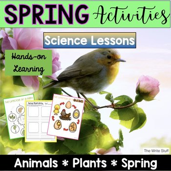 Spring Activities: Plants and Lifecycles