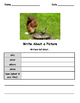 Write About a Spring Picture! Visual Writing Prompts - Great for ELLs
