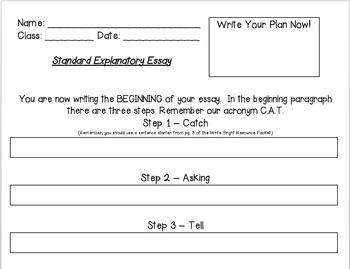 Write Bright Standard Essay Graphic Organizer
