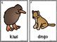 Write The Room -Australian Animals