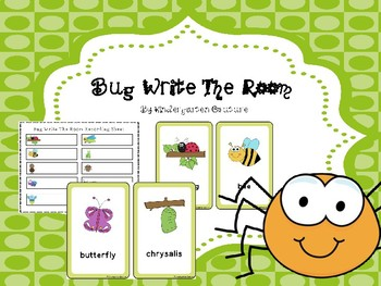 Write The Room - Bugs