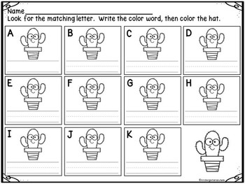 Write The Room Colors and Color Clip Cards (Cactus)