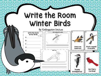 Write The Room Winter Birds