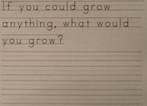 """Write and Draw Worksheet Based on """"My Garden"""" by Kevin Henkes"""