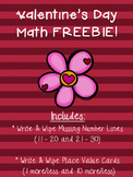 Write and Wipe Math FREEBIE!