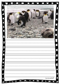 Write and Wipe: Penguins