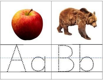 Write and Wipe Phonic Picture Flashcards