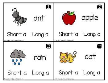 Write and Wipe Phonics: Short and Long A Set