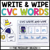 Write and Wipe CVC Word Activity