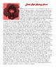 AP Gov - Write in Bureaucratese (Bureaucracy)