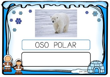 Write noun animals NORTH POLE (SPANISH) / Escritura animales POLO NORTE español