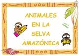Write noun animals rainforest / Escritura animales selva