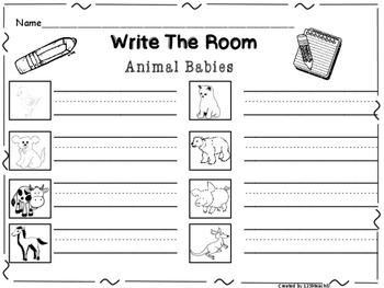 Write the Room Animal Babies