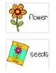 Write the Room: Journeys Kindergarten ELA Series, Lesson 23, How Things Grow
