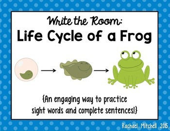 Write the Room: Life Cycle of a Frog