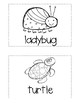 "Write the Room: National Journeys Kindergarten ELA Series, Lesson 17, ""Nature"""