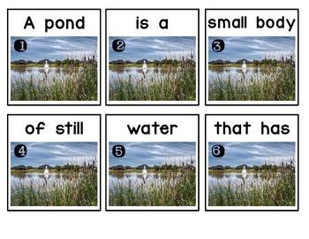 Write the Room: Pond Habitat