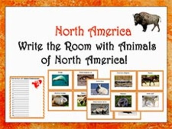 Write the Room with animals of North America!