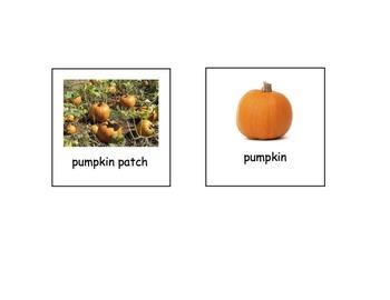 Write the room - Pumpkin
