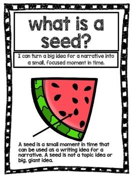 Writer's Workshop Seed Mini UNIT Watermelon Theme