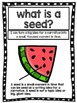 Writer's Workshop Seed Mini UNIT Watermelon Theme