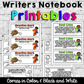 Writers Notebook: Punctuation Posters and Notebook Pals