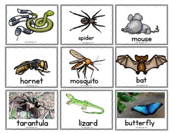 Writer's Workshop Topic picture/Word Cards (Back to School)