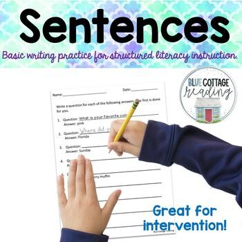 Writing Basic Sentences