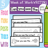 Writing Booklet - Can you see the - 5 Days of Activities Winter Theme