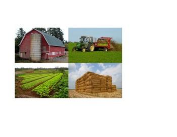 Writing Box 1- The Farm