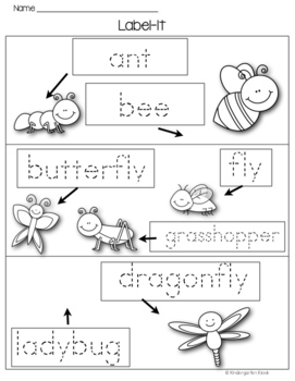 Insect Writing and Literacy Center Activities
